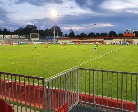 Ansicht des Rasens im Sportpark Dreieich